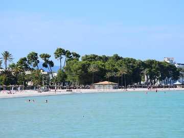 Port of Alcudia in Mallorca - Port of Alcudia in Mallorca