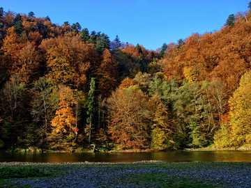 Jesień w górach - Pieniny i Dunajec późną jesienią