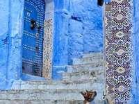 Котка на стълбите