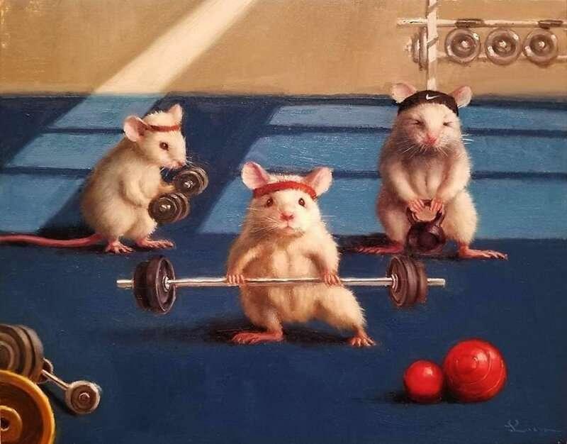 Малки мишки - Малки мишки, спортуващи, фитнес, силни (9×7)