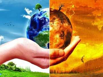 Ekosystémy