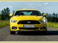 Ford Mustang 2020 - Κίτρινο αυτοκίνητο - Ford Mustang
