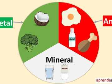 La nourriture selon son origine - La nourriture selon son origine