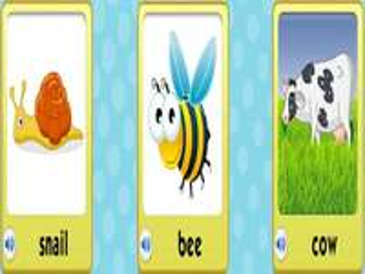 hlemýžď včelí kráva - lmnopqrstuvwxyzlmnop