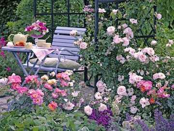 Teezeit zwischen Rosen. - Teezeit zwischen Rosen.