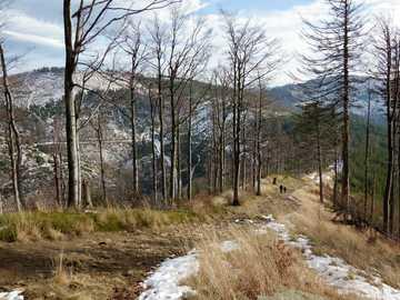 A walk in the Beskids - Winter walk in the Beskids