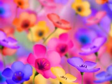Farbenfrohe Blumen - Schöne, bunte Blumen auf der Wiese