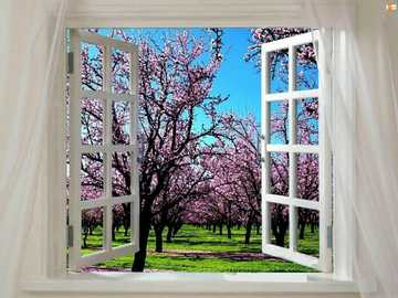 A window with a view - Beautiful window with a view :)