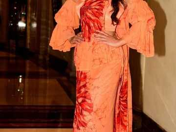 Jacqueline Fernandez - Jacqueline in a sari at the gala