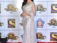 Katrina Kaif - Katrina in een sari bij het gala