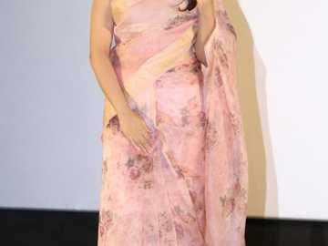 Sonakshi Sinha - Sonakshi w sari na gali