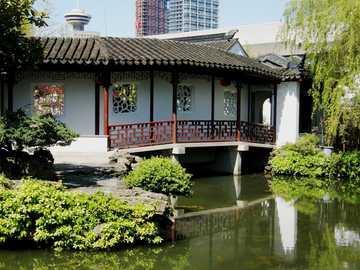 Chinese tuin - Een zicht op de Chinese tuin met een vijver