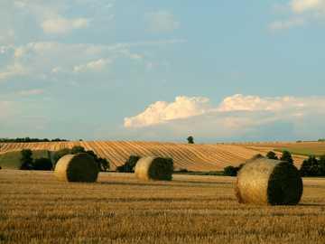 Polish landscape - End of summer - Polish landscape