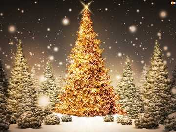 Christmas picture - A beautiful, golden Christmas tree for Christmas