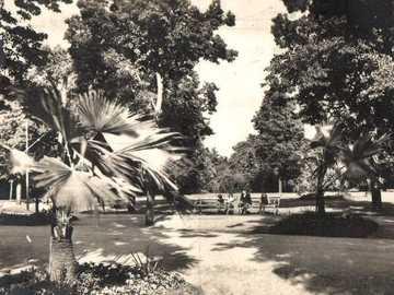chomutov náš park kdysi - chomutov náš park kdysi