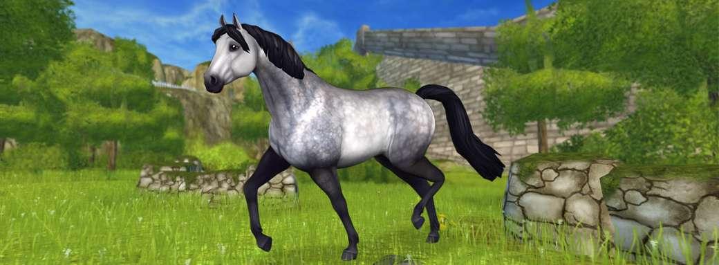 connemara - En vacker ponnyliknande häst. Foto från Star Stable Online (14×5)