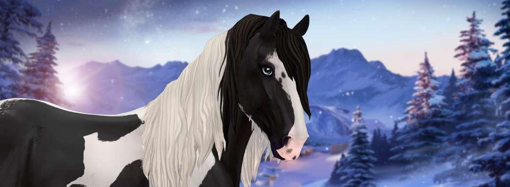 Ír cob - könnyű - Irish Cob - közepes. Itt van az Irish Cob téli háttérrel. Kép a Star Stable Online-tól. Ír cob egy téli háttér. Fotó a Star Stable Online-tól (10×4)