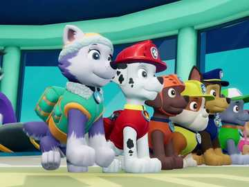 Paw Patrol - Paw Patrol - I recommend for children.
