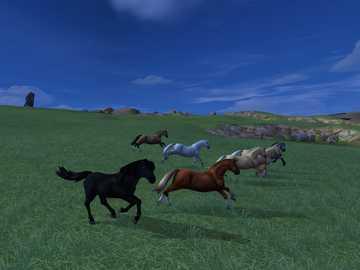 Rebaño salvaje - fácil - Manada de caballos salvajes. Foto de Star Stable Online.