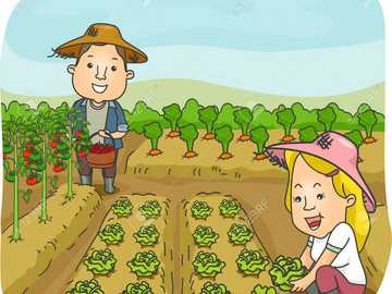 Happy Farmer's Day 2 - We celebrate peasant's day together
