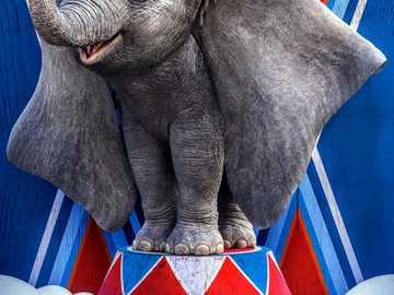 Ντάμπο  - J'adore Dumbo !!!!!!!!