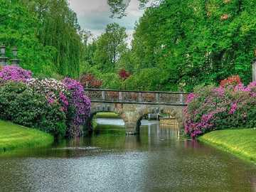 A bridge in the park. - Puzzle: a bridge in the park.