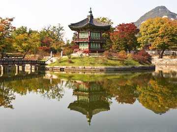 Japoński ogród - architektura ogrodowa