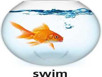 s is for swim - lmnopqrstuvwxyzlmnop
