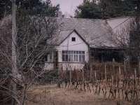 casa branca e cinza e árvores nuas - Uma bela casa no final da rua em uma pequena vila. Cejkov, Slovensko