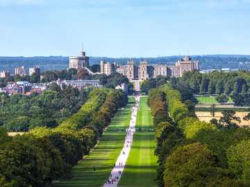 Windsor  - aleja prowadząca do zamku