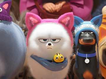 La vie secrète des animaux domestiques 2 - Je recommande de regarder ce film.