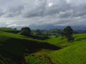 Foto de paisaje de montaña bajo cielo nublado - Evergreen bredvid Hobbiton-filmen