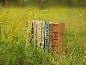 Meadow with books - Several Books Set On A Meadow