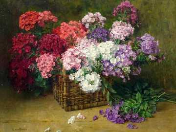 Kwiaty płomienia - Flame kwiaty (floks). Przez malarza kwiatów Clarę von Sivers.