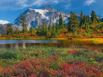 Krajobraz górski - góry - woda - kwiaty - piękny widoczek