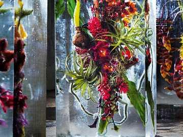 """Kwiaty mrożone przez artystę kwiatowego Azumę Makoto - """"Iced Flowers"""" autorstwa artysty kwiatowego Azumy Makoto"""