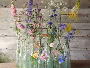 Feldblumen - Λουλούδια αγρού