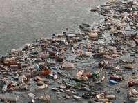 Föroreningar i miljöer