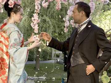 FLOWERS IN THE FILM - The geisha cherry blossoms The cherry blossoms achieved cult status at the latest with the filming o