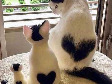 heart to heart - heart to heart to heart