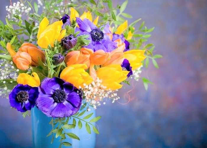 Flores de colores en un florero - Coloridas Flores En Un Florero.