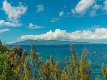 Mirando la isla desde la costa - árboles verdes y marrones cerca del mar azul bajo un cielo nublado azul y blanco durante el día. M