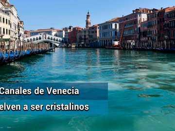 venecia desoues - despues del covid venecia