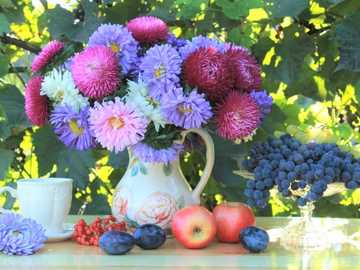 Colorful Asters In Vase, Fruit - Colorful Asters In Vase, Fruit.
