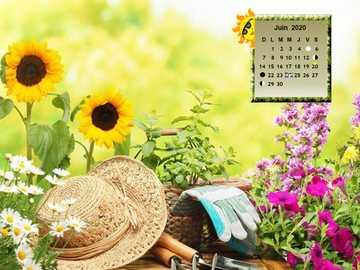 jaro - moje zahrada na jaře