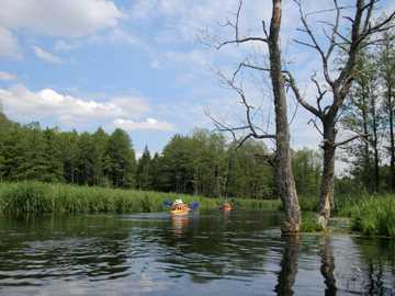 Spływ kajakowy - Spływ kajakowy na rzece
