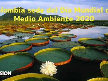 Environment - Colombia, host country of the world environment day 2020 with the importance of biodiversity
