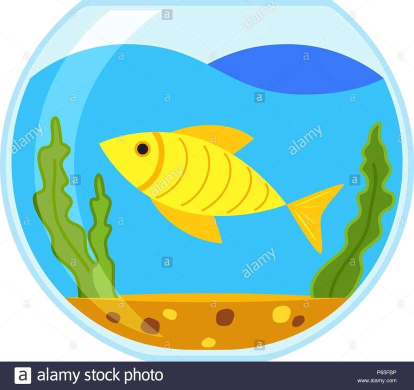peixe dourado - Personagens da história (4×4)