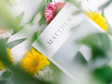 Matthew magazine - Book of Matthew, Bible with flowers on white table.