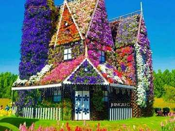 colorful house - flower house - flowers are everywhere
